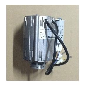 CONTI-펌프모터(신형)